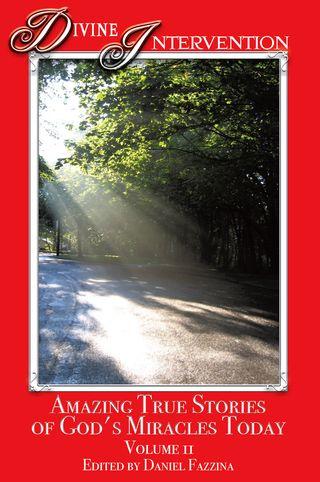 DI II cover copy